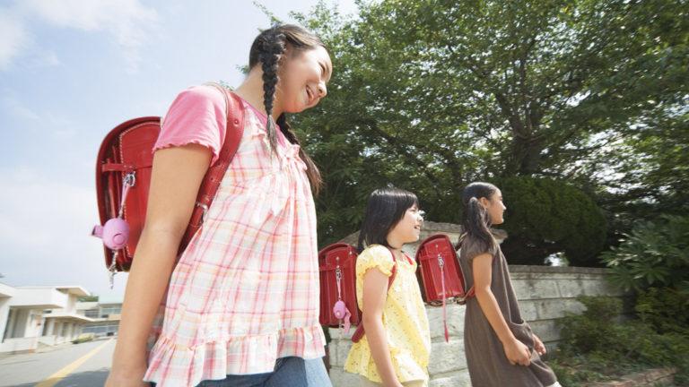 江戸川区の地域別教育環境