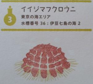 20141219_kasaisui36
