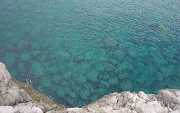 神津島のキレイな海